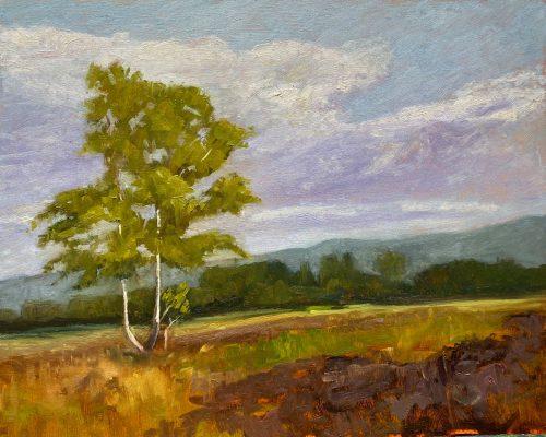 Pleinair, Öl auf MDF, 30x24cm; Inspiration: Ich kehre immer wieder ins Moor. Das Moor ist so fazinierend und immer eine Entdeckungsreise wert.