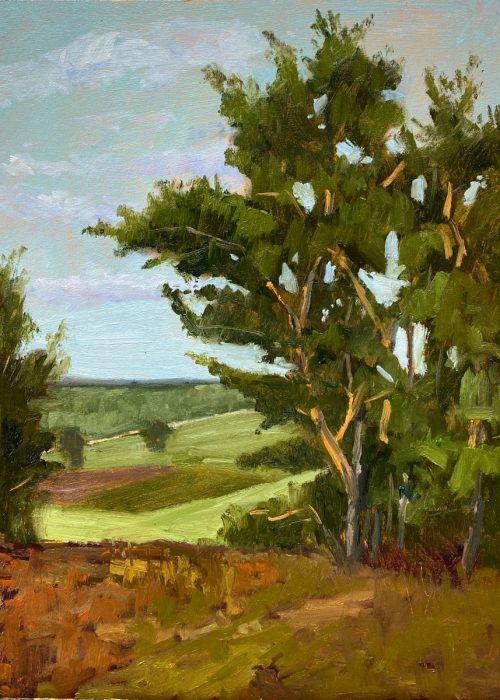 Pleinair, Öl auf MDF, 24x30cm; Inspitration: Die Kirchdorfer Heide habe ich 2018 während eines Pleinair-Events entdecken dürfen und ich reise immer wieder gerne dorthin. Die Farbigkeit die Bäume, wenn die Sonne auf die Kiefern Stamme scheint, dieses leuchtende Knallorange, ist einzigartig.